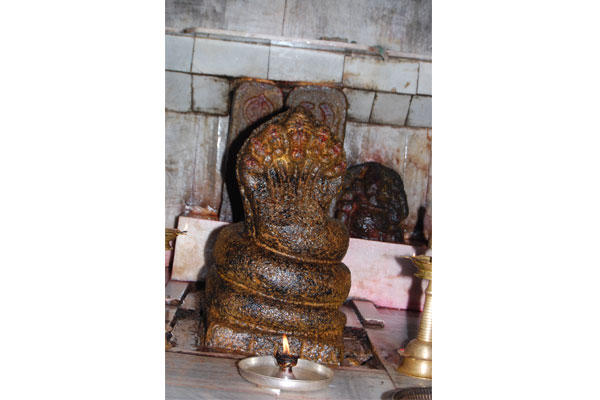 Main Idol of Sri Subramanyashwara in temple