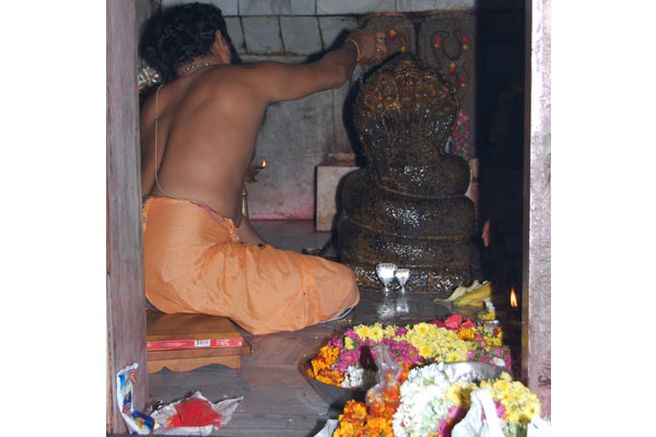 Kshera abhishekam being performed to main idol